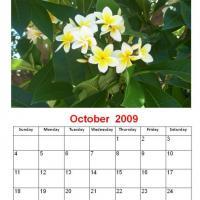 Printable October 2009 Yellow Flower Calendar - Printable Monthly Calendars - Free Printable Calendars