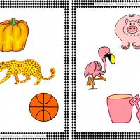 Printable Orange and Pink Color Set - Printable Flash Cards - Free Printable Lessons