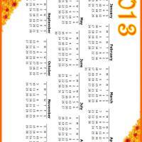 Orange Flowers 2013 Calendar