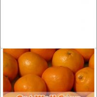 Oranges Get Well Card
