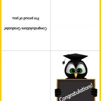 Owl in Robe Graduation Card