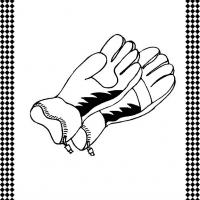 Pair of Gloves Flash Card
