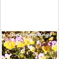 Printable Pansy Flower Card - Printable Easter Cards - Free Printable Cards