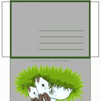 Printable Rabbits In The Garden Envelope - Printable Card Maker - Free Printable Cards