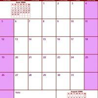 Red & Pink July 2009 Calendar