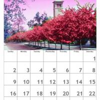 Red August Scenery Calendar