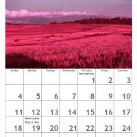 Printable Red January Scenery Calendar - Printable Calendar Pages - Free Printable Calendars
