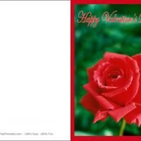 Printable Red Rose Card - Printable Valentines - Free Printable Cards