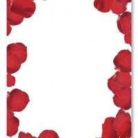 Red Rose Petals Blank Invitation