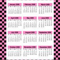Retro Pink 2009 Calendar