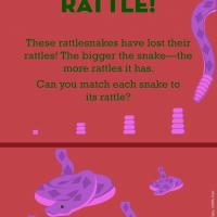 Science &amp;amp; Math: Shake Your Rattle