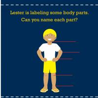 Printable Science: Body Basics Anatomy - Printable Preschool Worksheets - Free Printable Worksheets