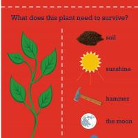Printable Science: Botany - Printable Preschool Worksheets - Free Printable Worksheets