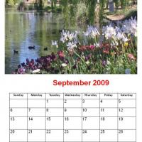 Printable September 2009 Flowers Beside The Pond Calendar - Printable Monthly Calendars - Free Printable Calendars