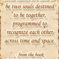 Soul Mates Program