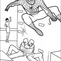 Spiderman Captures Robbers