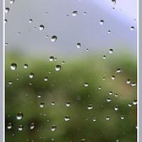 The Autumn With Rain Drops Bookmark