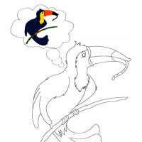 Toucan Coloring Sheet