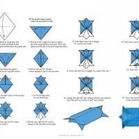 Turtle Origami