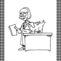 Printable Veterinarian Flash Card - Printable Flash Cards - Free Printable Lessons