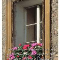 Vintage Country Style Window Postcard