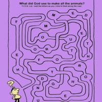 What Did God Use To Make All The Animals Maze