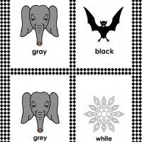 White, Gray and Black Color Flash Card