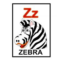 Z is for Zebra Flash Card