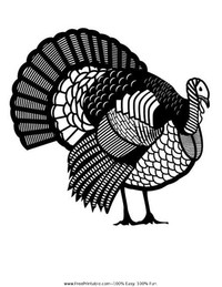 Detailed Turkey Coloring Page