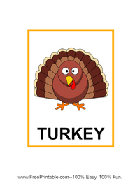 Turkey Flash Card