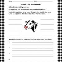 Adjective Usage Worksheet