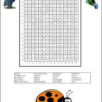 Buggin Out Word Search