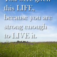 Given This Life to Live It Quote