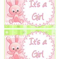 Pink Bunny Baby Cards