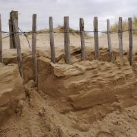 Sand Dune With Wooden Fence
