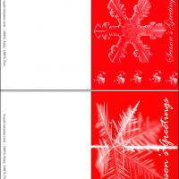 Snowflakes In Red Background
