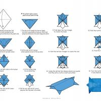 Easy Origami Turtle Instructions You Can Fold Easily | 200x200